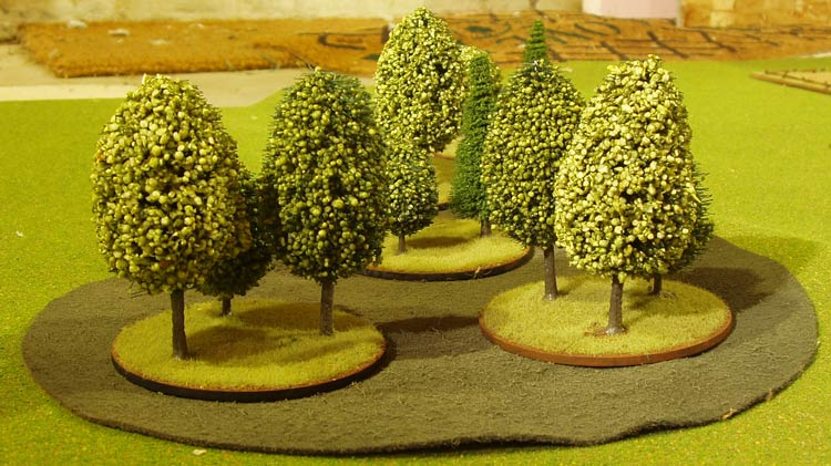 Fall in New England and 6mm Trees – SYW6mm